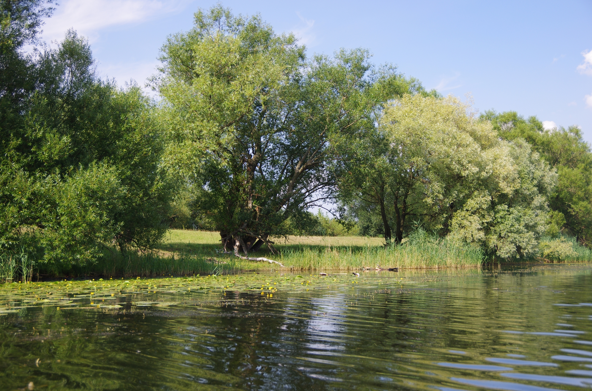 kayaking-odra-east-and-west_15-26-43_25-07-2016