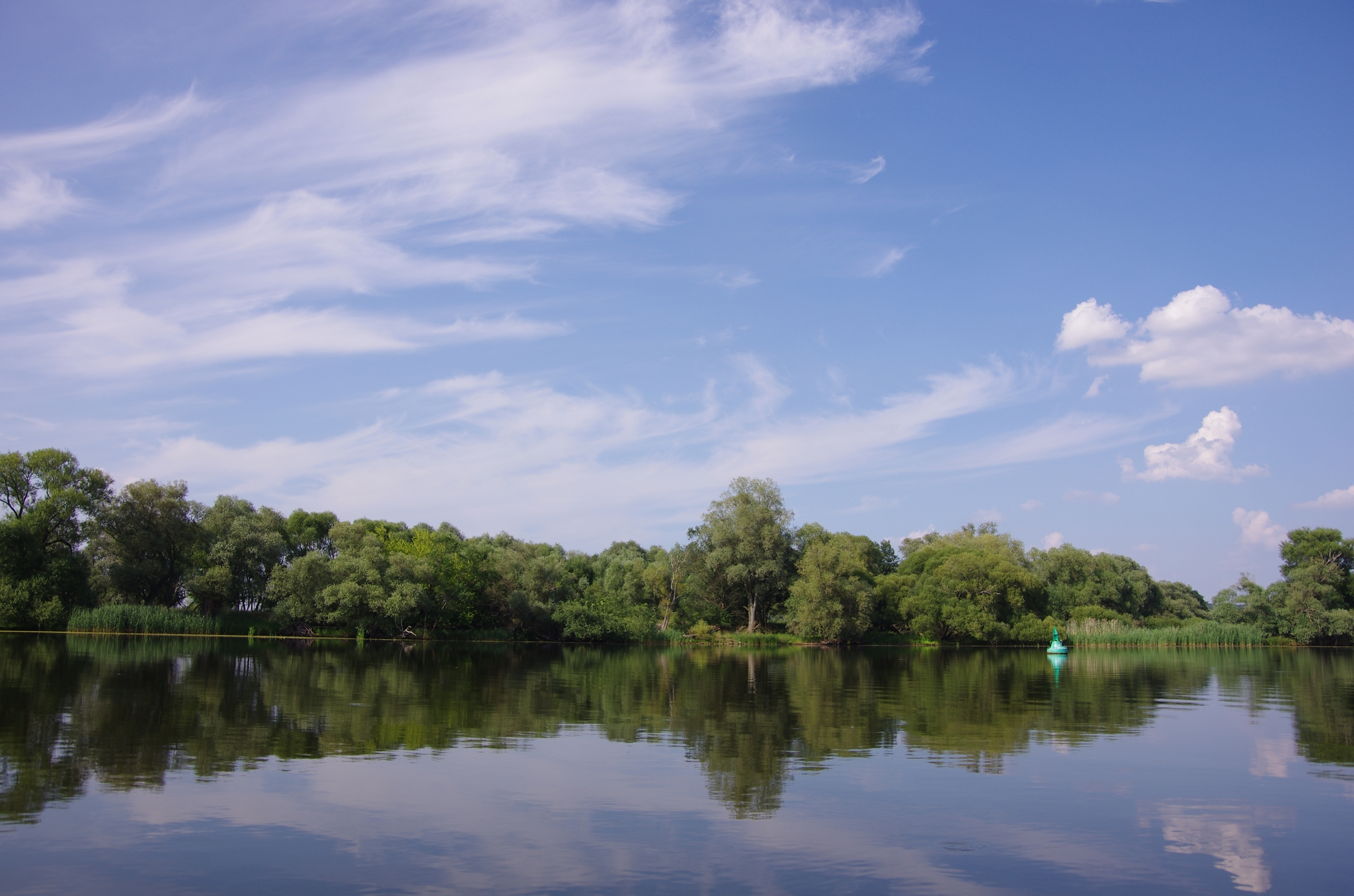 kayaking-odra-east-and-west_15-48-16_25-07-2016