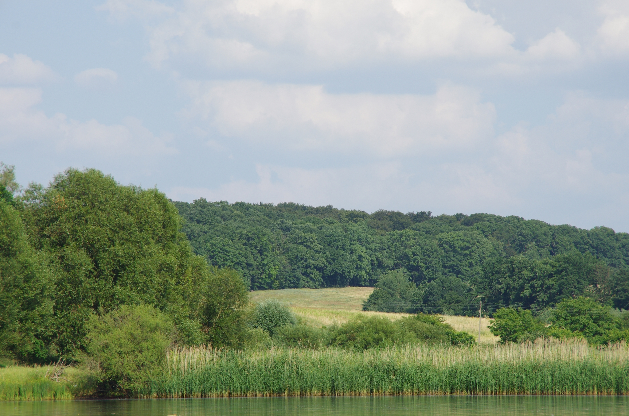 kayaking-odra-east-and-west_16-06-35_25-07-2016