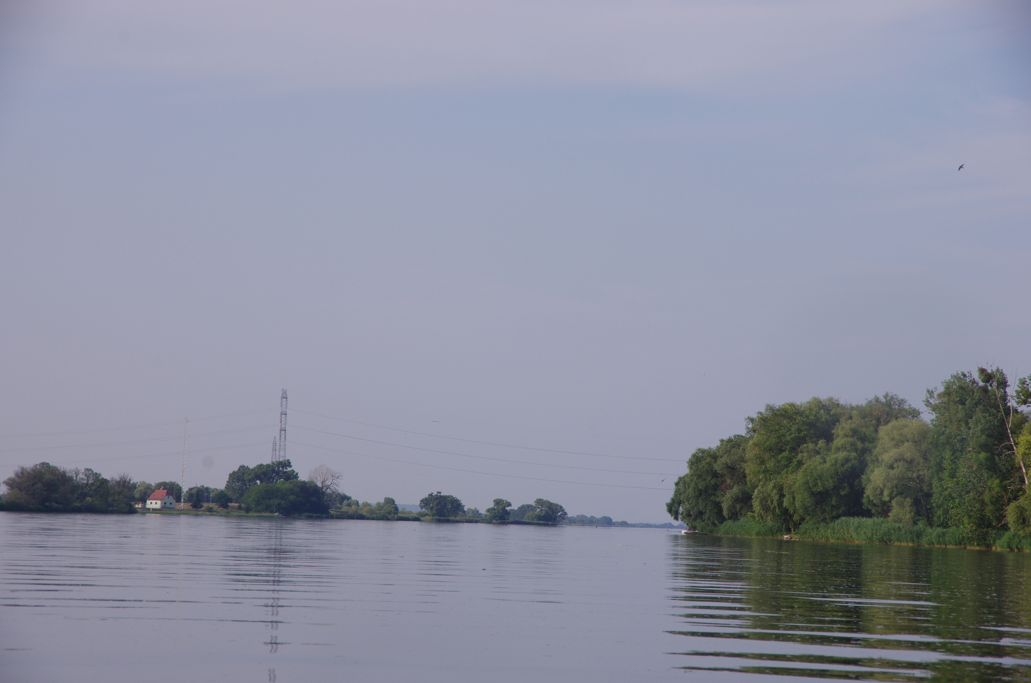 kayaking-odra-east-and-west_17-00-41_25-07-2016