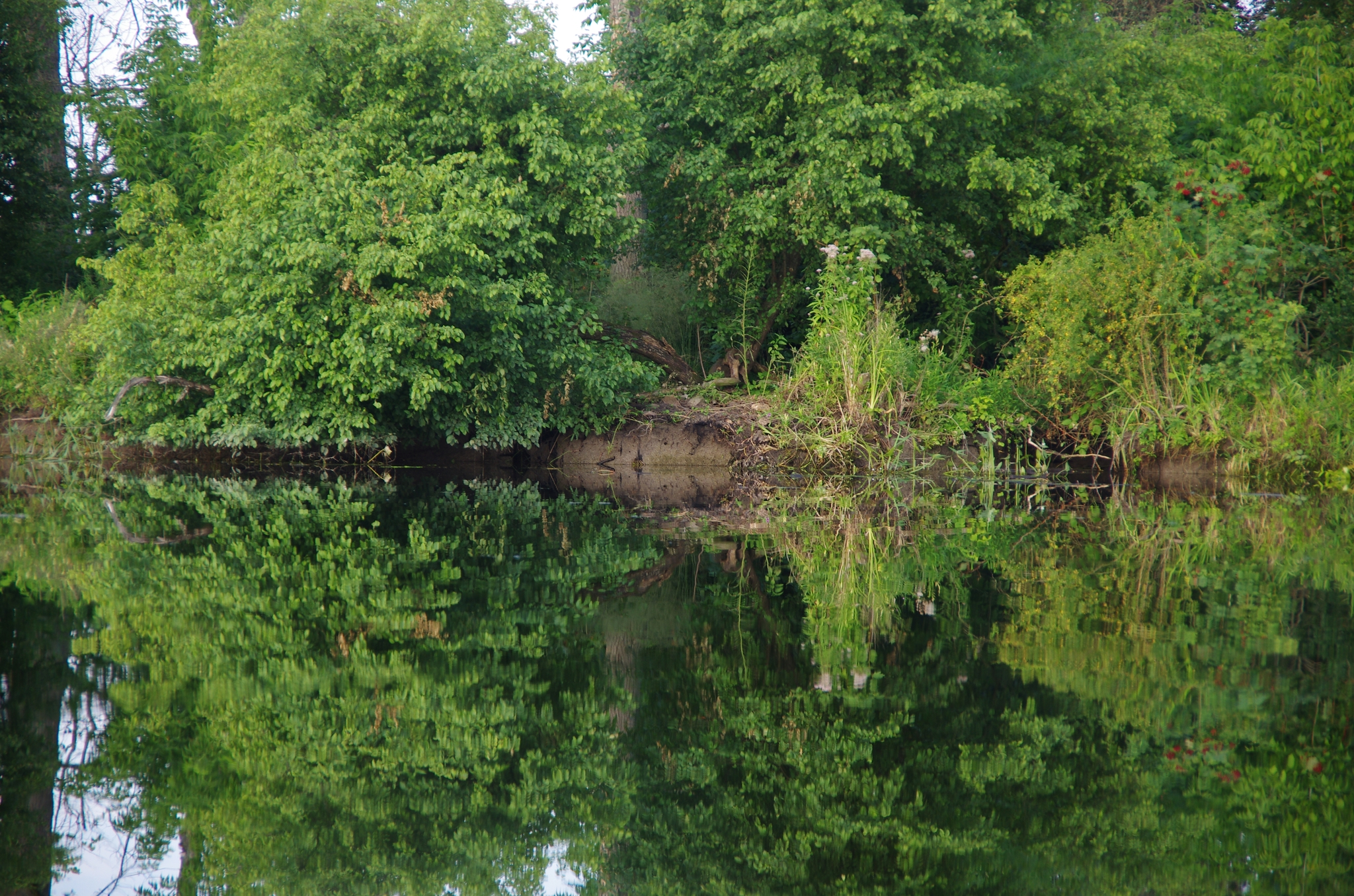 kayaking-odra-east-and-west_18-08-52_25-07-2016