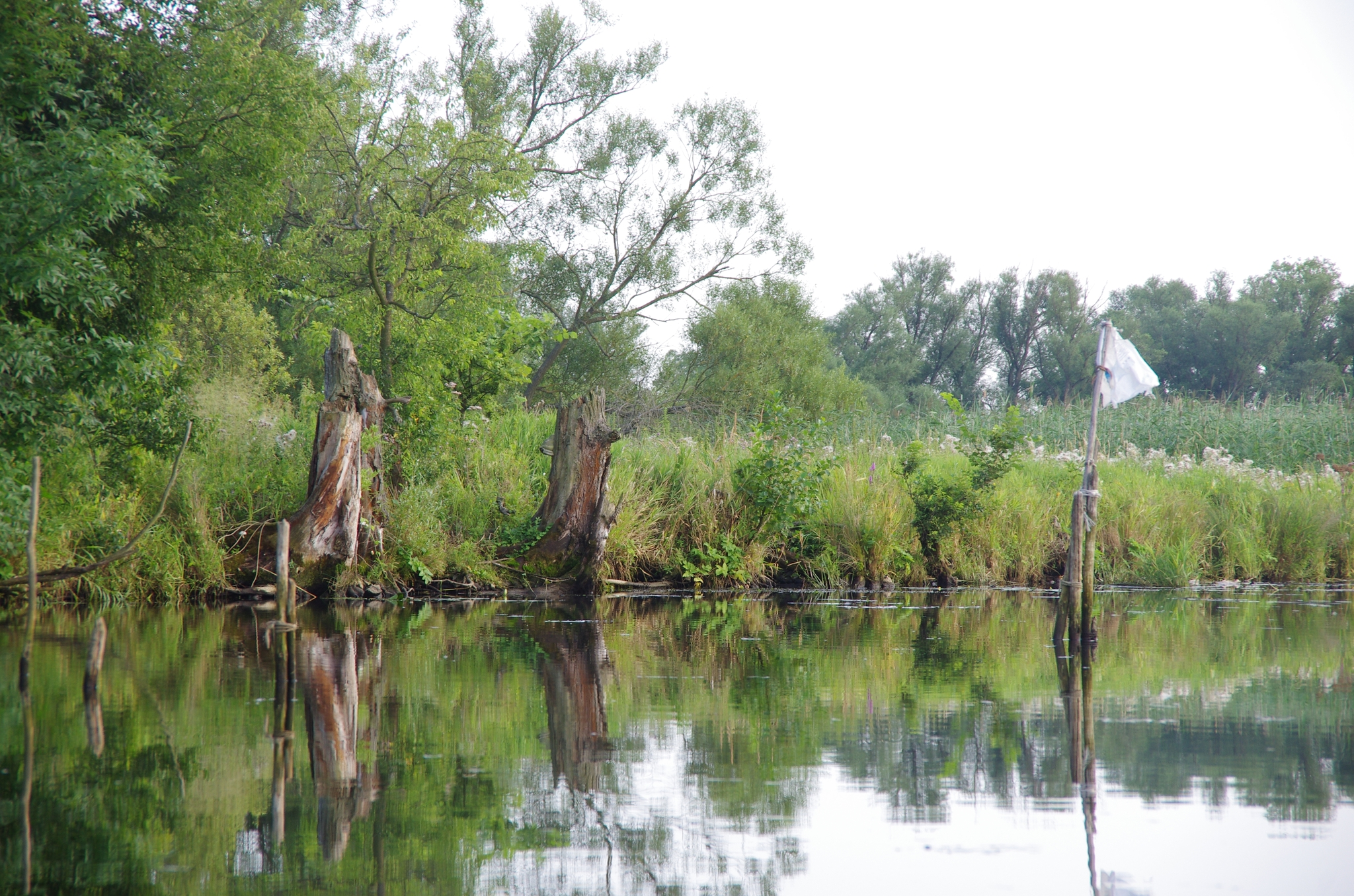 kayaking-odra-east-and-west_18-11-12_25-07-2016