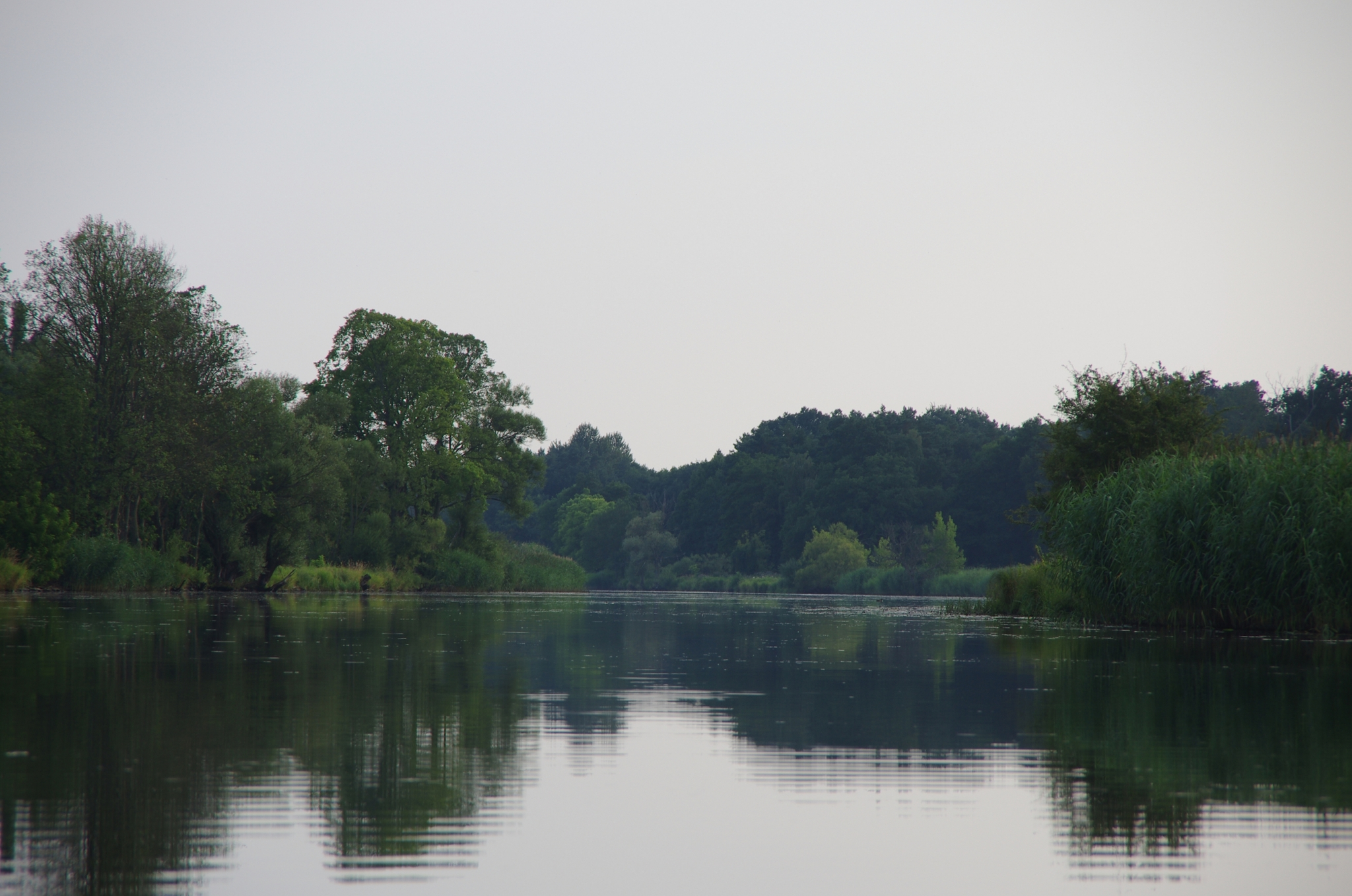kayaking-odra-east-and-west_18-15-11_25-07-2016