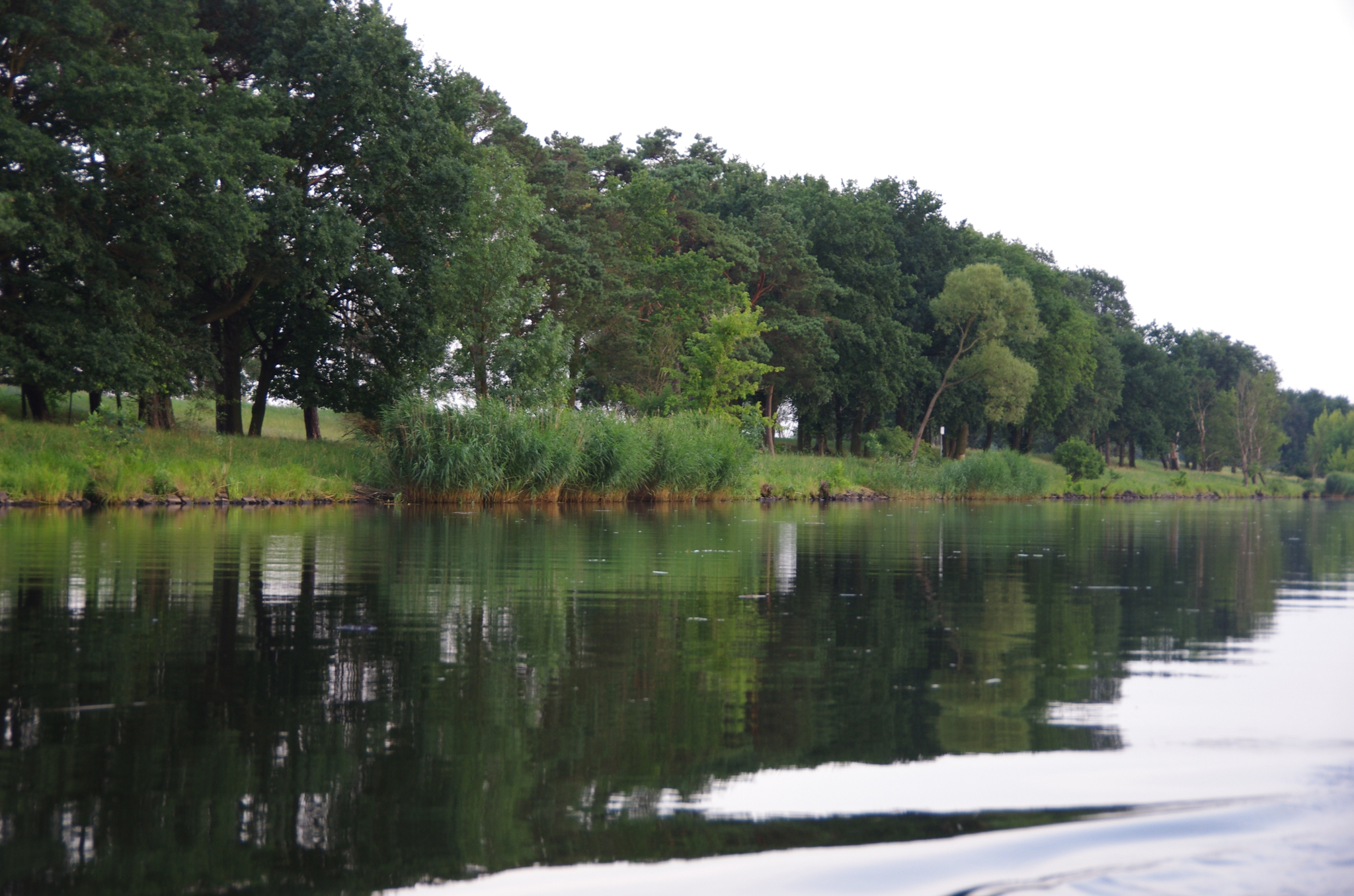 kayaking-odra-east-and-west_18-58-09_25-07-2016